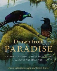 Drawn from Paradise : The Natural History, Art and Discovery of the Birds of Paradise