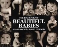 Big Book of Beautiful Babies Board Book (BRDBK)