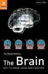 The Rough Guide to the Brain (Rough Guide Reference Series) (2 Revised)