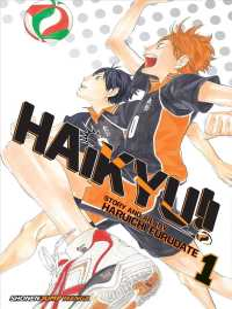 Haikyu!! 1 (Haikyu)