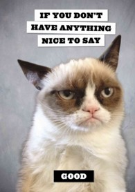 Grumpy Cat Flexi Journal : If You Don't Have Anything Nice to Say, Good (JOU)