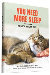 You Need More Sleep : Advice from Cats