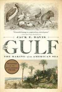 The Gulf : The Making of an American Sea (Reprint)