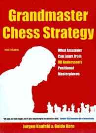 Grandmaster Chess Strategy : What Amateurs Can Learn from Ulf Andersson's Positional Masterpieces