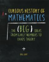 A Curious History of Mathematics : The Big Ideas from Early Number Concepts to Chaos Theory