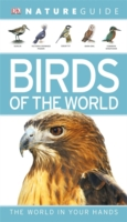 Nature Guide Birds of the World -- Paperback