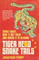 Tiger Head, Snake Tails : China Today, How it Got There and Why it Has to Change -- Paperback