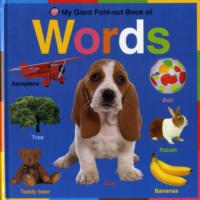 Words (My Giant Fold-out Books) -- Hardback