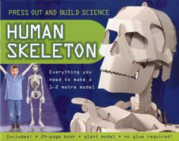 Press Out and Build Human Skeleton -- Mixed media product