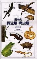 日本の両生類・爬虫類 (自然観察シリーズ (22))