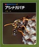 アシナガバチ (科学のアルバム 43)