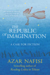 The Republic of Imagination