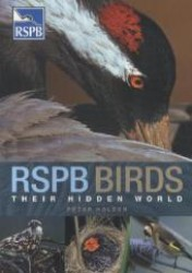 Rspb Birds : Their Hidden World (Rspb)