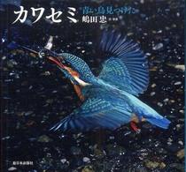 カワセミ 青い鳥見つけた