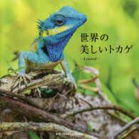 世界の美しいトカゲ Lizard