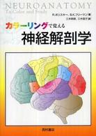 カラーリングで覚える神経解剖学